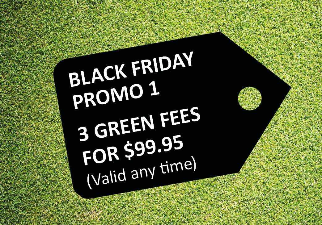 Promo 1: 3 Green Fees (valid any time)