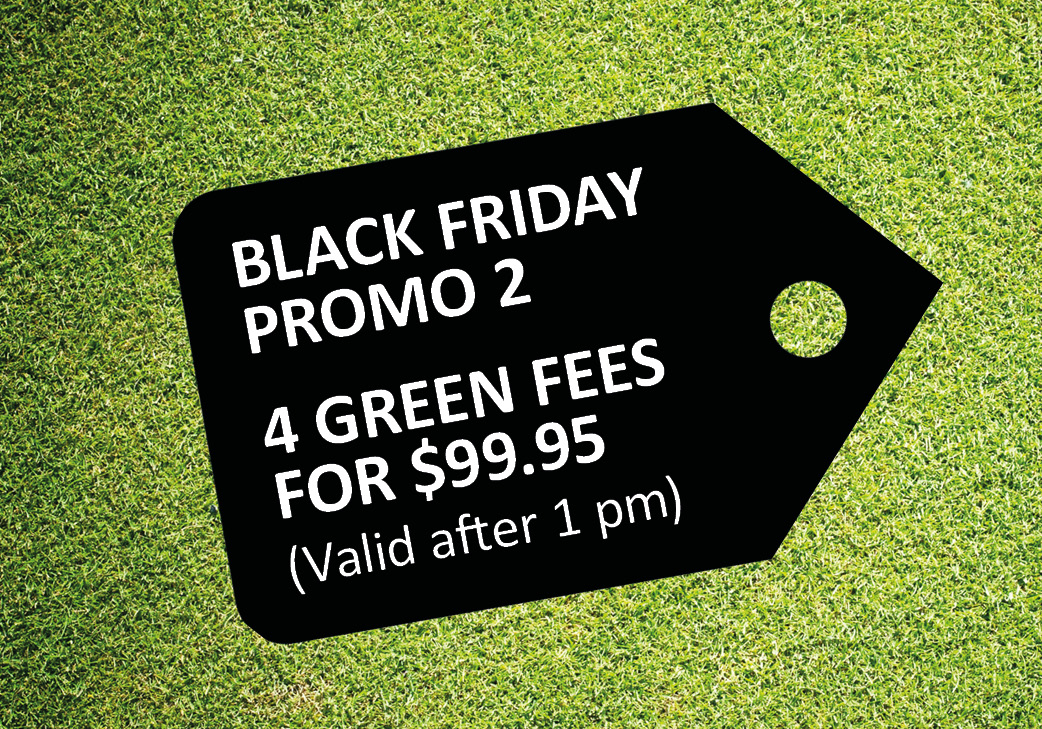 Promo 2: 4 Green Fees (valid after 1pm)